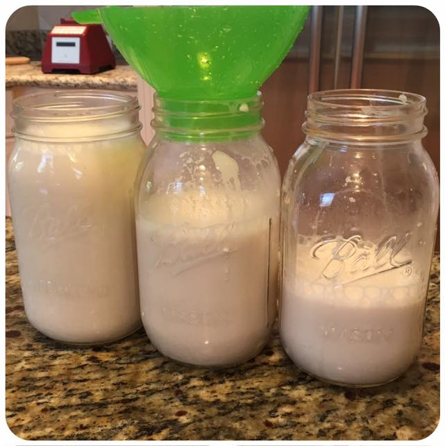 Enjoy Homemade Organic Raw Almond Milk